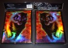 Sammelkarten-Album 4 Pocket MAX Protection LION 7030 GER