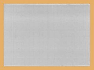 148x105mm A6 Einsteckkarten Hülle Hartfolie KOBRA T76